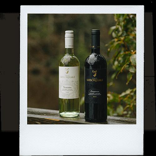 Bottles of sassoregale wine